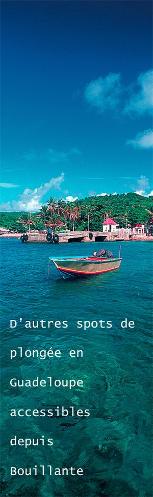Plongée Guadeloupe