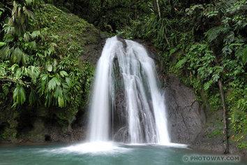 Petites annonces le blog d atout guadeloupe for Au jardin tropical guadeloupe