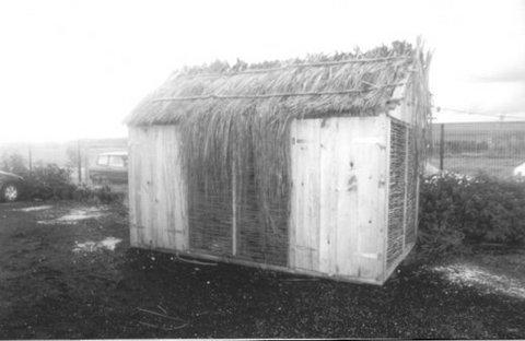 Photo 3. Une case en gaulettes