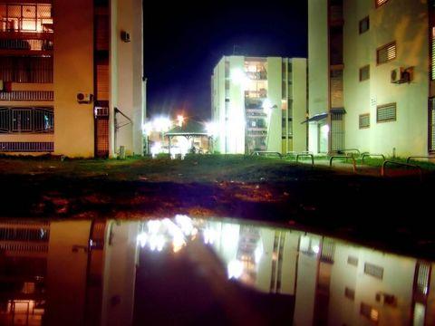 Lauricisque la nuit