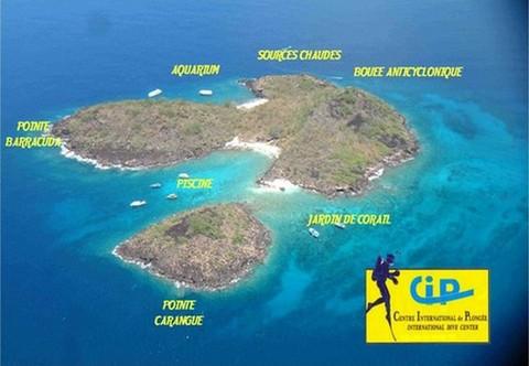 Les plongées du CIP sur les islets Pigeon