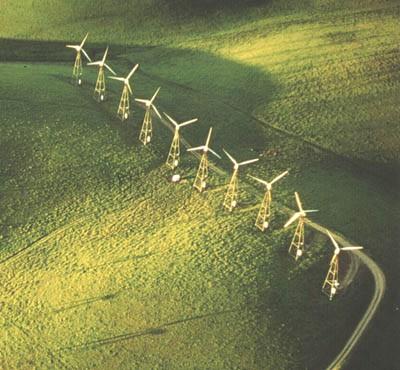 Photo Blog Environnement