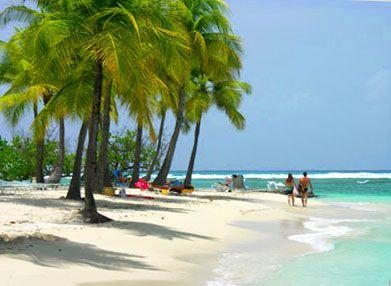 Destination Guadeloupe ?