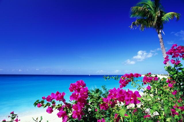 Je pars en Guadeloupe en octobre - photo de l'ile de Saint Martin
