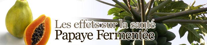 papaye santé @ bien-et-bio.com
