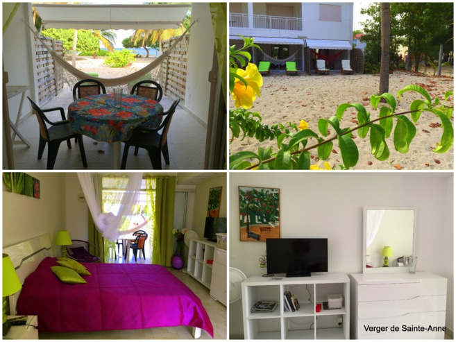 Studio Sargasse Muscade Guadeloupe