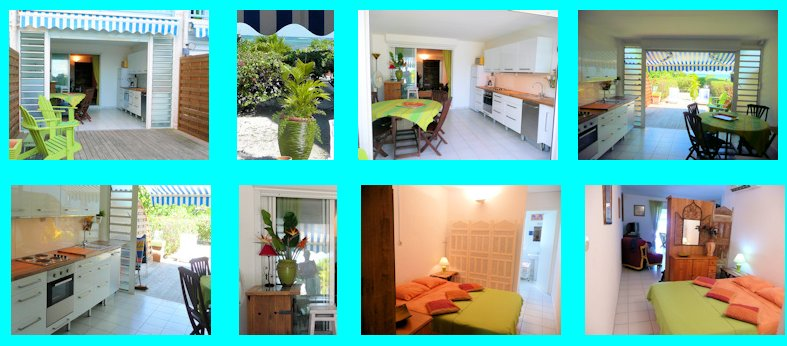 Location Guadeloupe : appartement de bord de mer