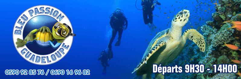 Une plongée en Guadeloupe avec Bleu Passion Guadeloupe