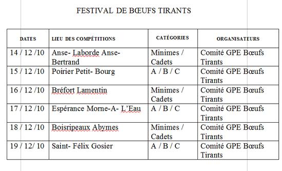 Festival en Guadeloupe de boeufs tirants