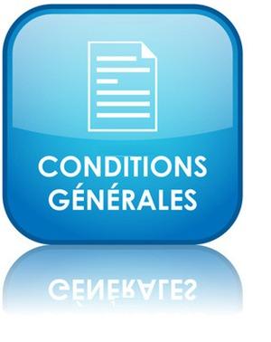 conditions générales de vente et utilisation site web