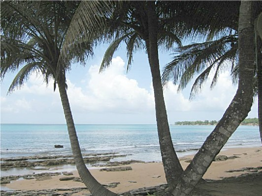 Guadeloupe-Caret