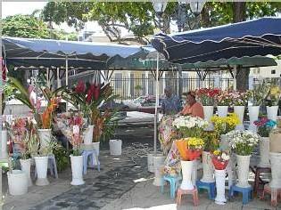 Ville de Pointe à Pitre-fleurs