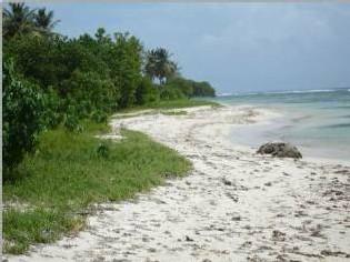 Commune sainte-anne-plages