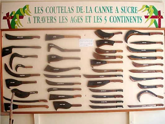 Sainte rose- Expo de sabres de coupes