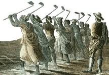 Esclaves préparant les sols