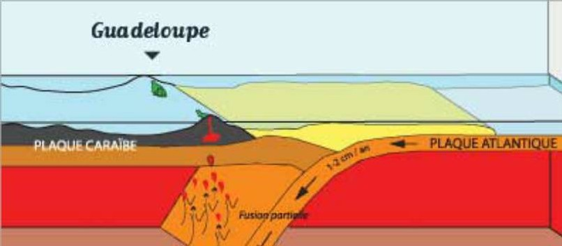 Profil des séismes tectoniques