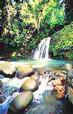 Une cascade du parc national de Guadeloupe