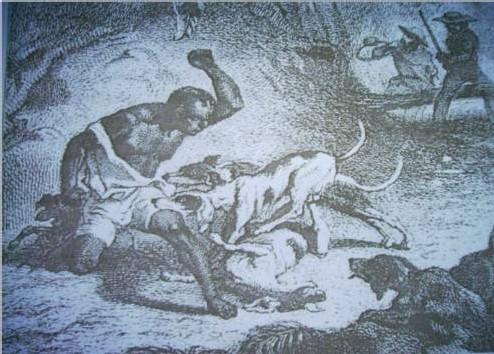 Esclave attaqué par les chiens