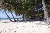Heureusement, chers touristes, la Guadeloupe c'est aussi ca