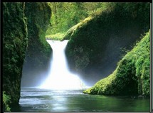 pollution des rivieres de Guadeloupe