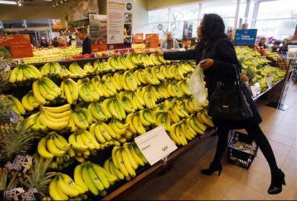 banane de Guadeloupe fragilisée
