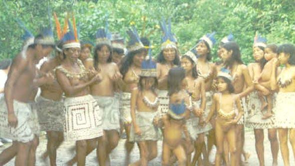 Indiens d'Amazonie. ce ne sont pas les indiens repéré par la FUNAI