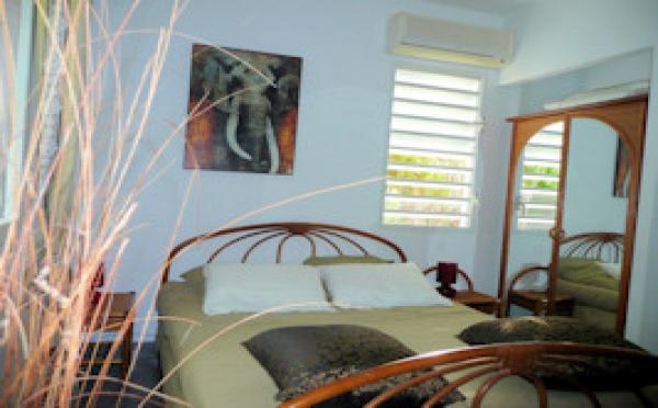 Les plus belles locations de Guadeloupe à réserver pour Noël