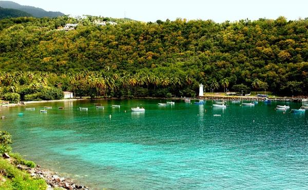 Pour un tourisme vert guadeloupéen