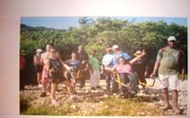 Eco Ballade dans la mangrove de Saint Félix à Gosier.