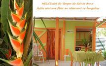 Héliconia : Gite Guadeloupe aux parfums des tropiques