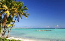 Je pars en Juillet ou Août en Guadeloupe