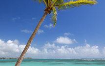 Location de vacances d'un hébergement authentiquement créole en Guadeloupe
