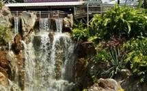 Visite au jardin botanique de deshaies en Guadeloupe