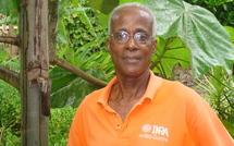 Une journée à la découverte de la mangue de Guadeloupe