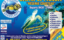 Bleu Passion Guadeloupe en vidéos