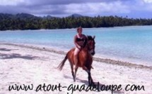 Equitation Guadeloupe
