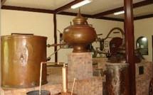 Le rhum, alcool roi en Guadeloupe