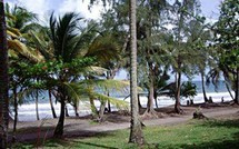 Sur la commune de  Trois Rivières, la plage de Grande Anse va changer