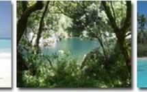 A la recherche d'un hebergement touristique en Guadeloupe ?