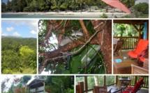 Racoon Vanille Guadeloupe, faites le plein de Nature !