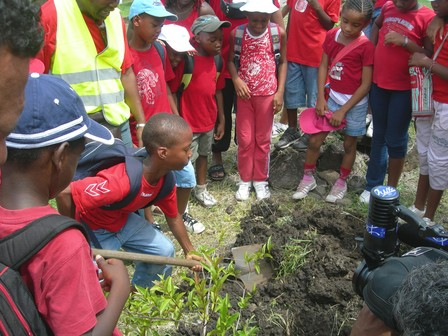Apprentissage de la plantation, photo EDACS